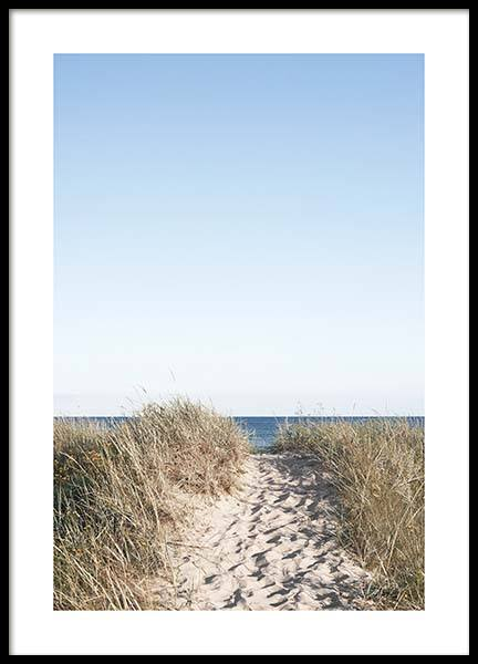 Path on beach Poster no grupo Posters  / Natureza em Desenio AB (10477)