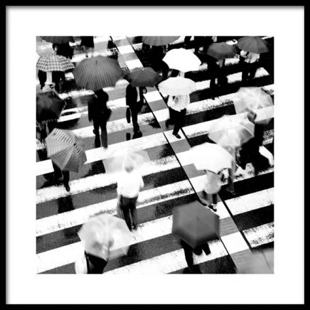 Umbrellas on Crosswalk Poster no grupo Posters  / Preto e branco em Desenio AB (11678)