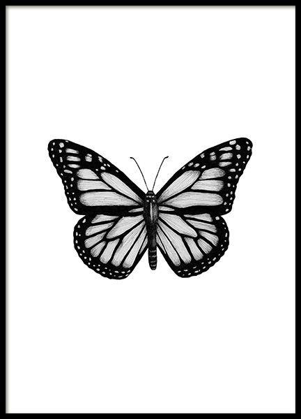 Butterfly Drawing Poster no grupo Posters  / Preto e branco em Desenio AB (12307)