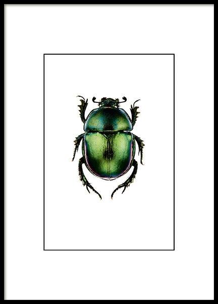 Beetle Small Poster no grupo Posters  / Vintage em Desenio AB (7430)