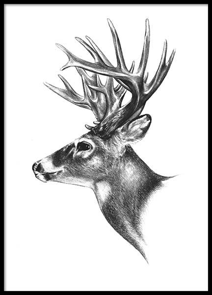Deer Black And White Poster no grupo Posters  / Preto e branco em Desenio AB (8106)