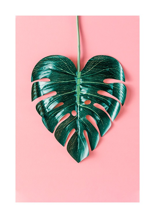 Heart-Shaped Monstera Poster / Botânico em Desenio AB (12524)