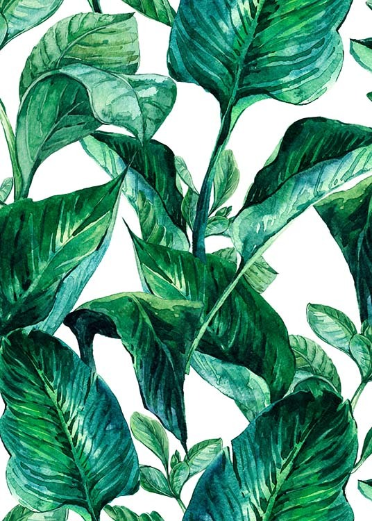 Green Leaves Pattern Poster / Arte em Desenio AB (2288)