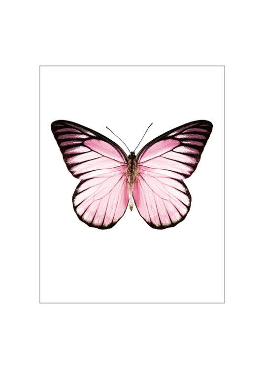 Pink Butterfly Small Poster  / Animais em Desenio AB (7431)