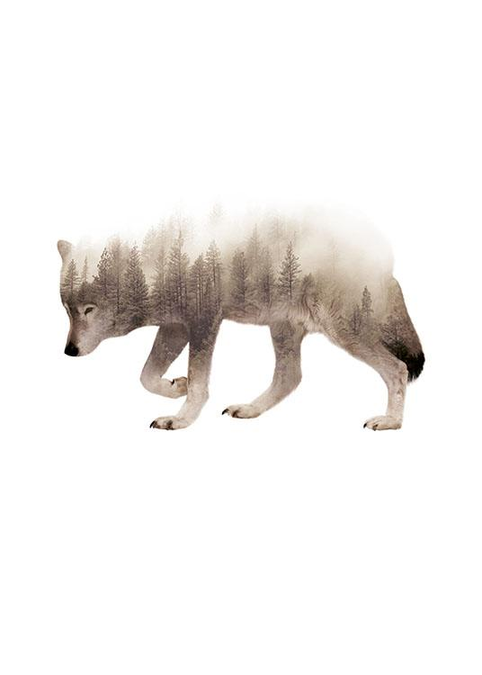 Forest Wolf Poster / Animais selvagens em Desenio AB (8161)